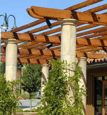 Patio Cover landscape design